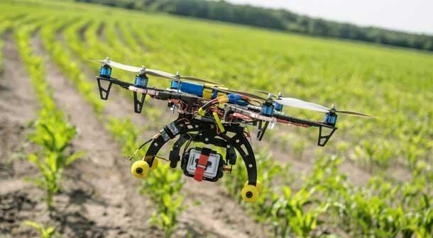 سند ملی تحول کشاورزی دانشبنیان تهیه و تصویب میشود